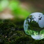 Môi trường là gì? Tại sao phải bảo vệ môi trường